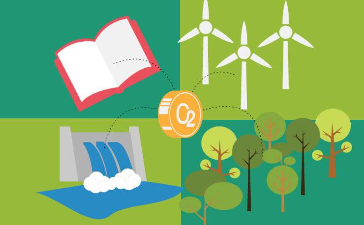 Conheça as ações de compensação ambiental